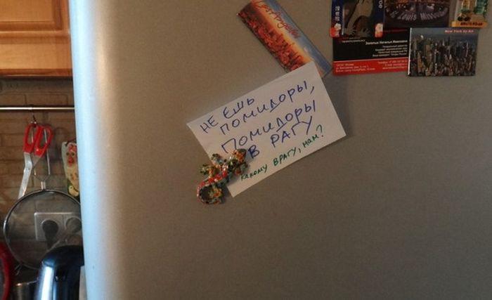 Прикольные записки на холодильнике