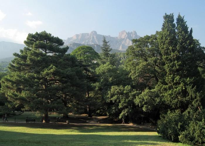 Алупкинский парк в Крыму
