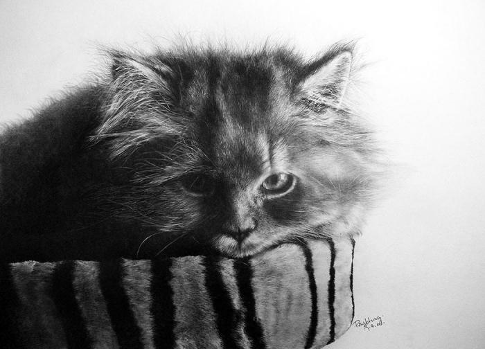 Карандашные рисунки Пола Ланга