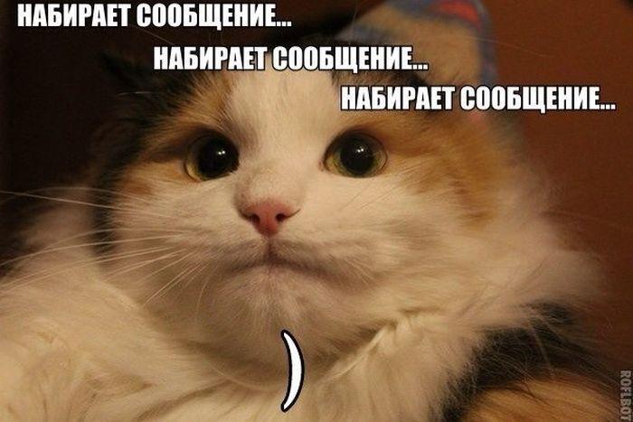 ПОДБОРКА ФОТОПРИКОЛОВ № 23