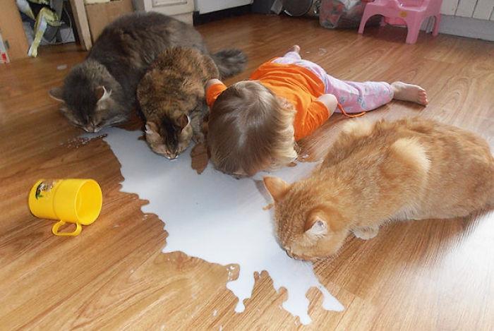 Дети которые считат себя животными