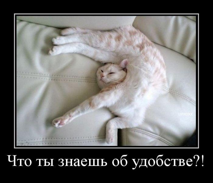 ПОДБОРКА ПРИКОЛЬНЫХ ДЕМОТИВАТОРОВ за 04.03.15