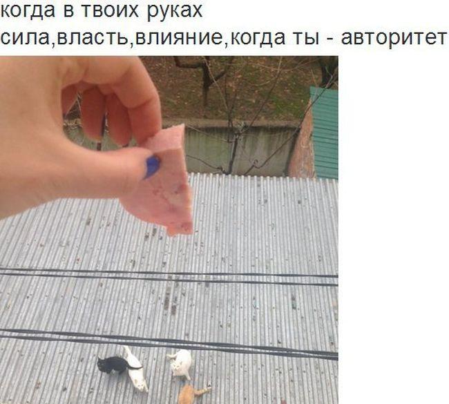ПОДБОРКА ФОТОПРИКОЛОВ № 59