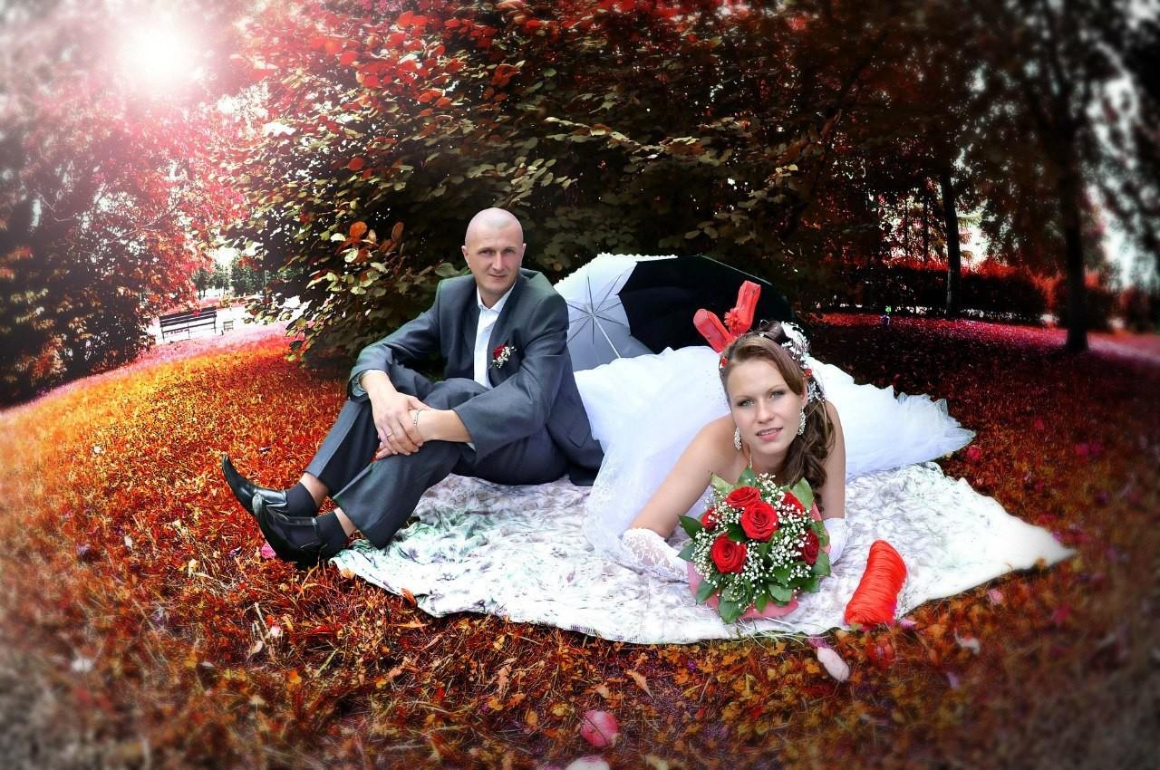 некоторых праздники классные фото на свадьбу пресс-конференции свое решение