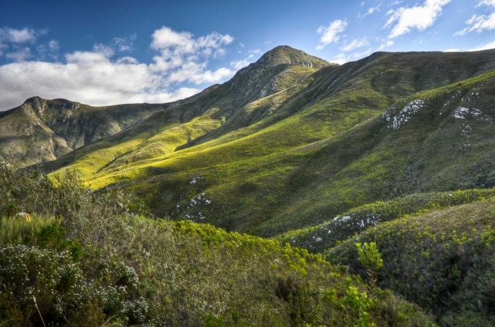 Интересные факты об ЮАР