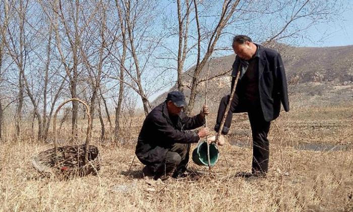 Два инвалида посадили 10000 деревьев