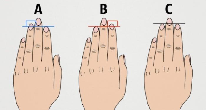 Что говорит длина ваших пальцев о вашем характере