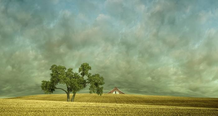 Красивые пейзажи Лизы Вуд