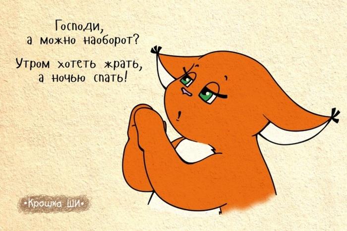 Комиксы от белки Ши
