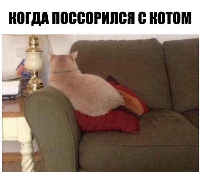 ПОДБОРКА ФОТОПРИКОЛОВ № 116