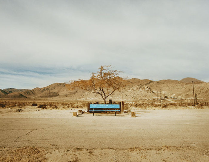 Жители американской пустыне Мохаве