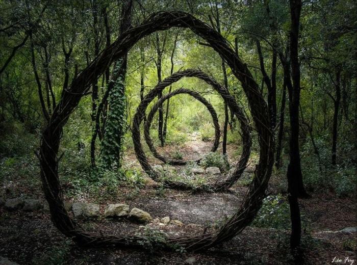 Креатив в лесу от Спенсера Байлса