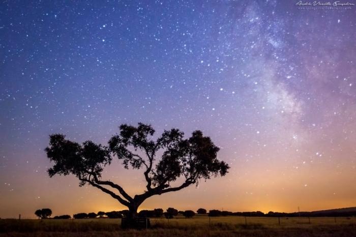 Звездное небо над озером Алькева