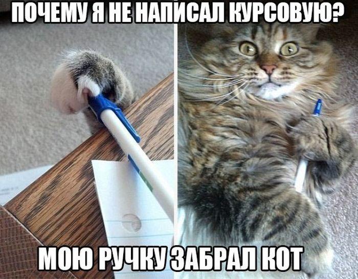 ПОДБОРКА ФОТОПРИКОЛОВ № 133