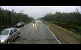 Неадекватный лось перебегает дорогу