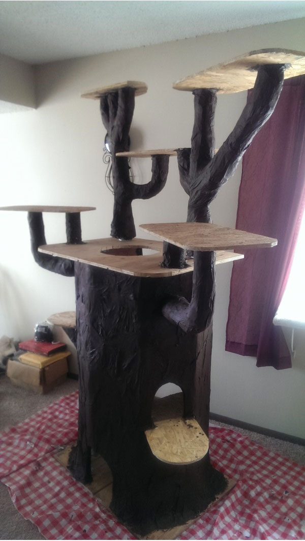 Домик для кота из подручных материалов фото