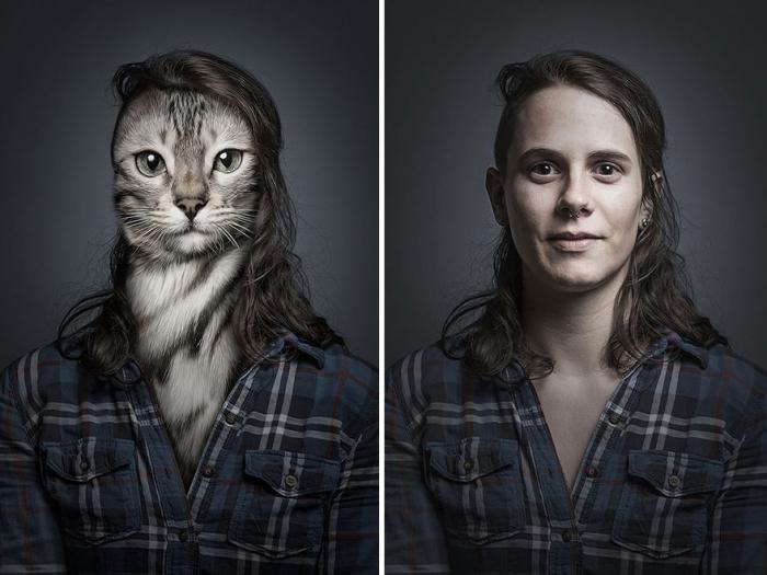 Коты и их хозяева