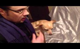 Изгнание демона из собаки