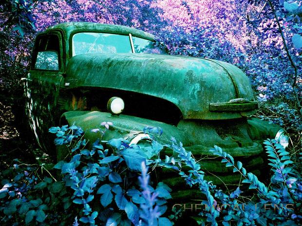 Музей мертвых машин
