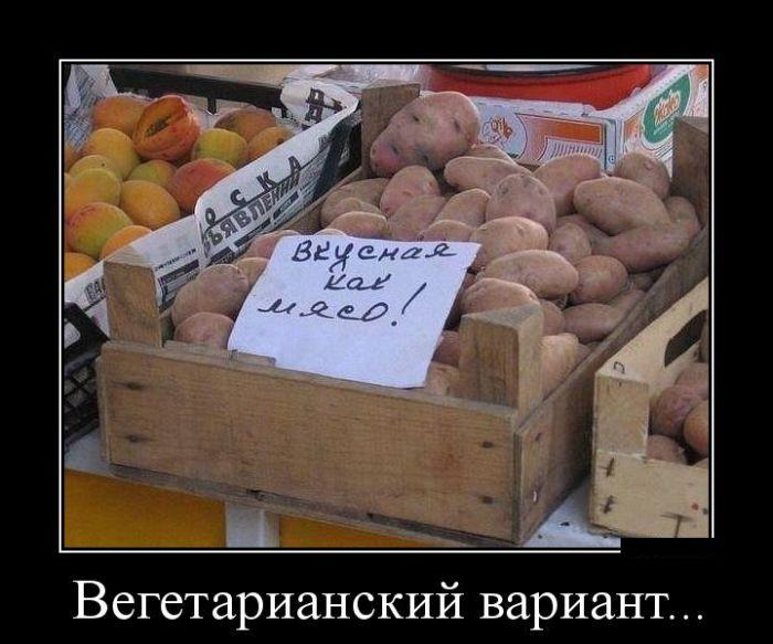 ПОДБОРКА ПРИКОЛЬНЫХ ДЕМОТИВАТОРОВ за 01.10.15