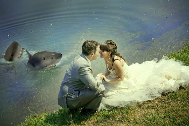 Веселые свадебные фотографии (часть 5)