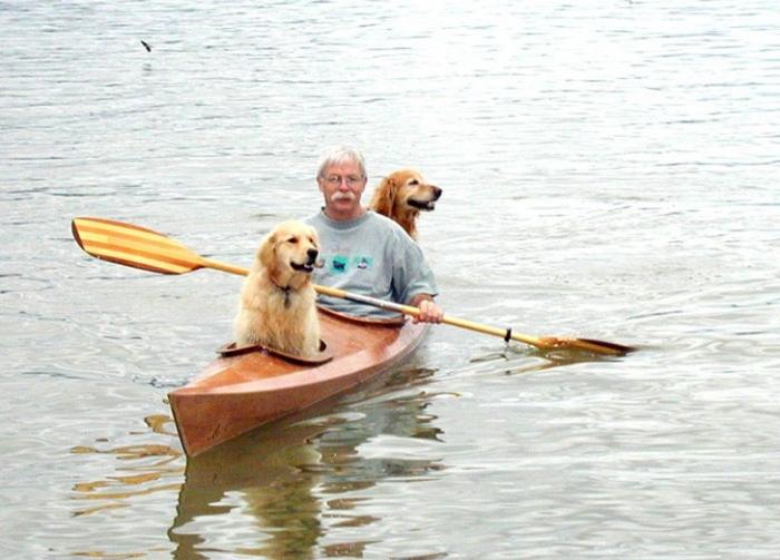 Путешествие на байдарке с собаками