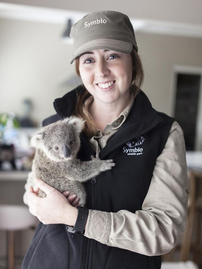 Милые фотографии крошки коалы