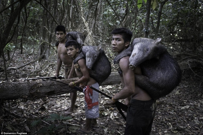 Знакомство с племенем Ава