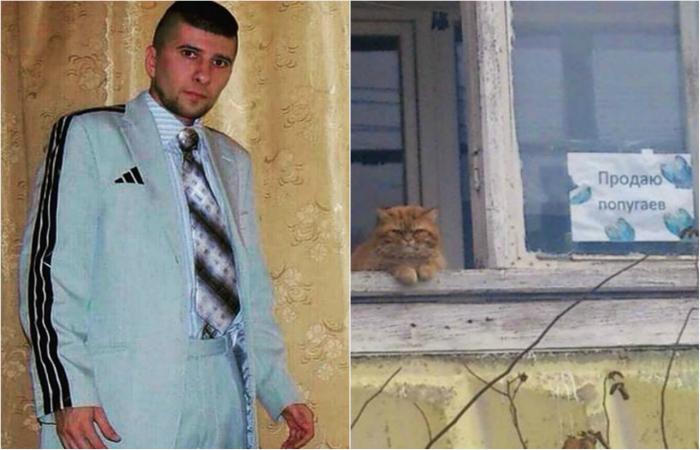 Такое возможно только в России. Часть 20