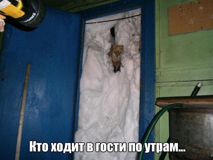 ПОДБОРКА ФОТОПРИКОЛОВ № 382
