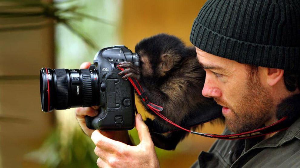 Как называют фотографа животных