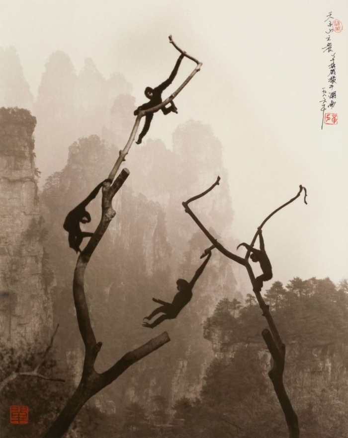 Искусство Дон Хонга