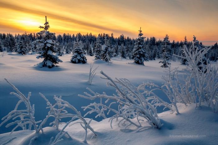 Снежные ландшафты Финляндии