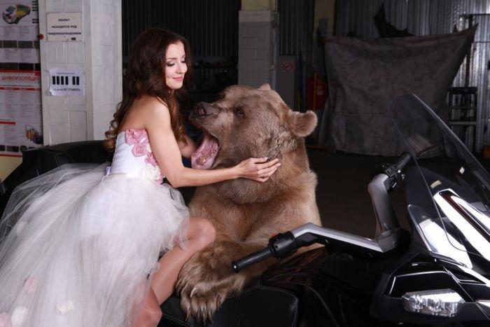 Смелая фотосессия девушки с медведем