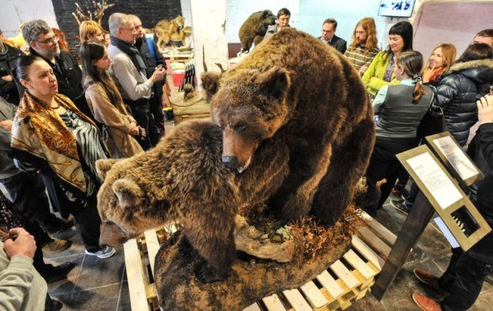 В Санкт-Петербурге открылась выставка «Интимные тайны животных»