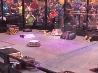 Битва семнадцати роботов на арене