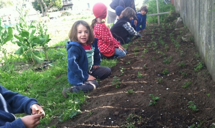 Школа в Сан-Франциско, где детей учат выращивать себе еду