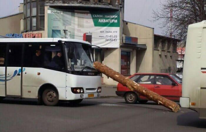 Упавшее с лесовоза дерево едва не убило водителя маршрутки