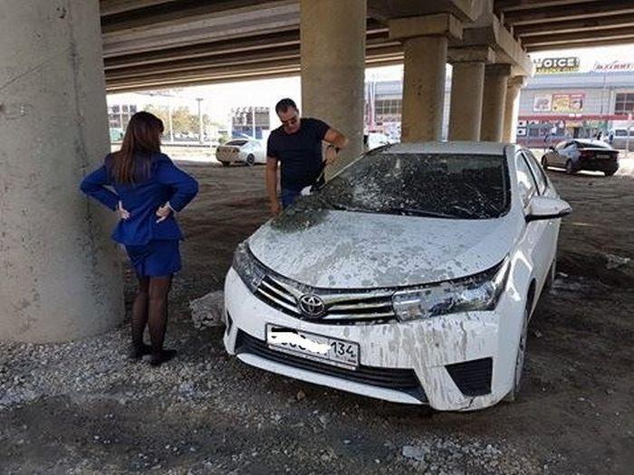 В Волгограде неправильно припаркованный автомобиль прокурора случайно залил ...