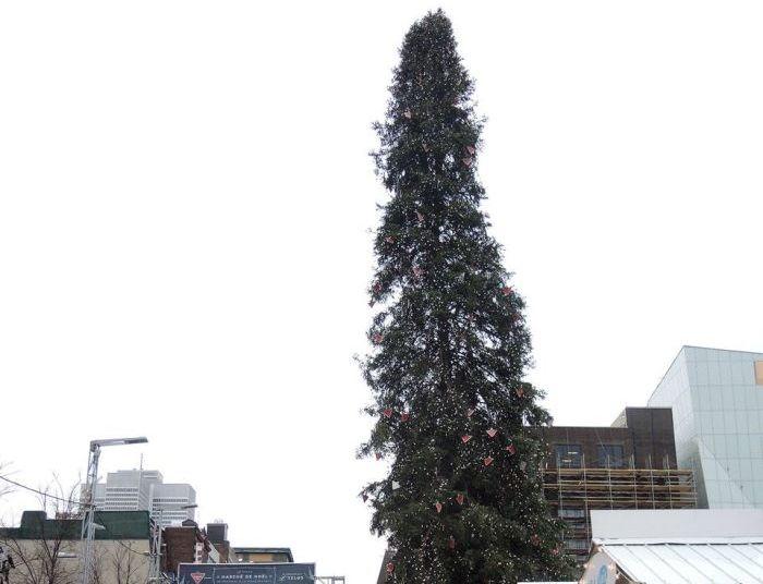 В Монреале установили самую уродливую елку