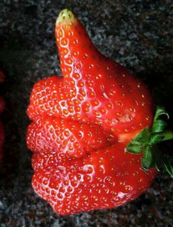 Овощи и фрукты причудливой формы
