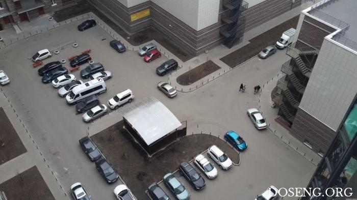 Парковка во дворе жилого дома в Санкт-Петербурге