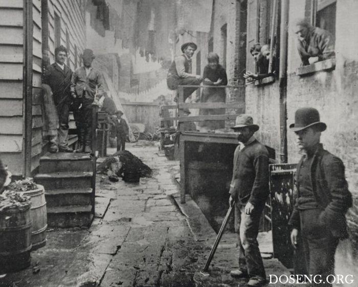 Криминальный мир Нью-Йорка XIX века
