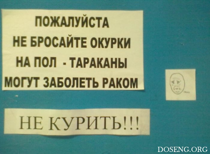 Креативные российские запреты