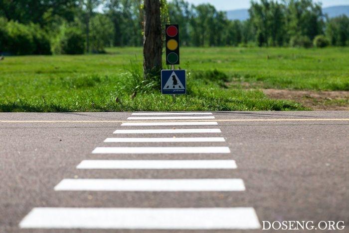 В Красноярске появился пешеходный переход для сусликов