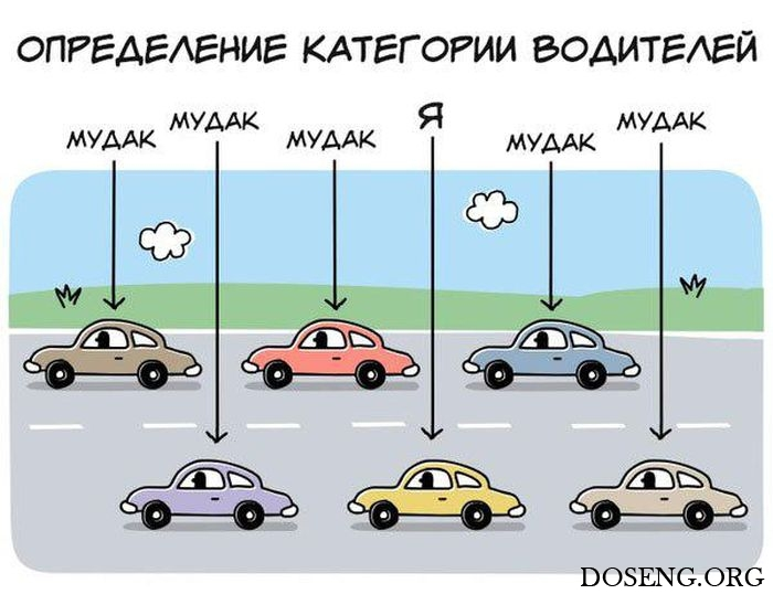 Водительские приколы картинки