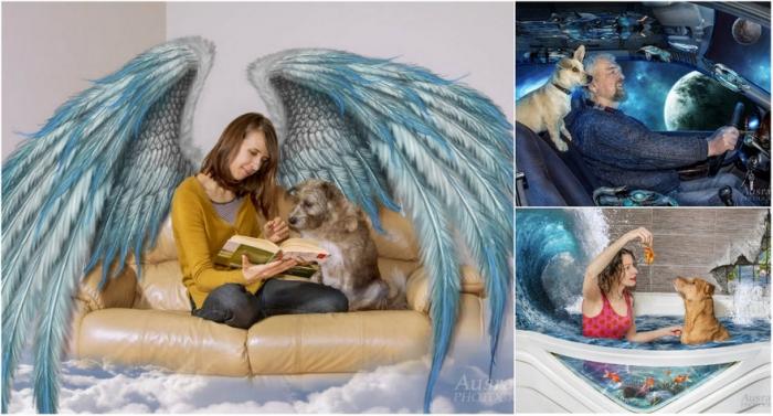 Фотограф создает удивительный мир для собак из приюта