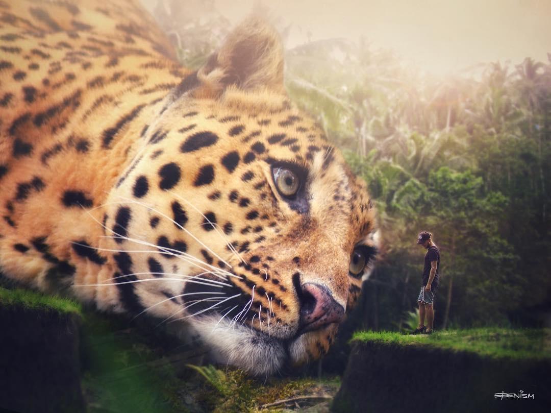 огромного картинки большие животные маленькие люди в мире вспомнил трек ревность