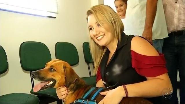 Собака четыре месяца ждет у больницы умершего хозяина