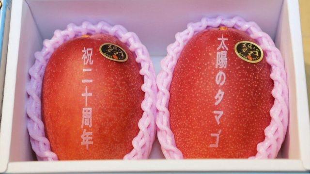 Сколько может стоить манго класса Премиум в Японии